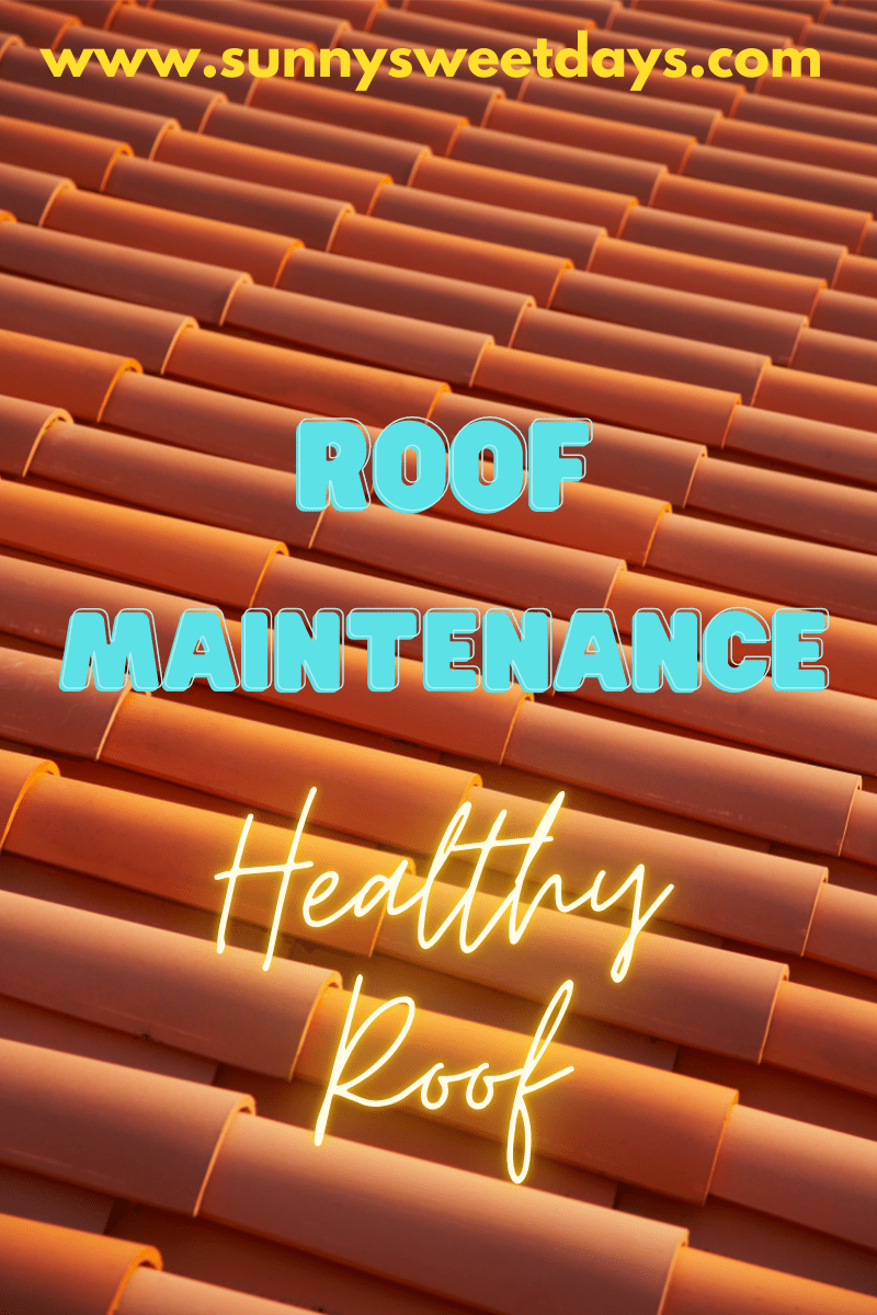 A Roof Maintenance Guide To Ensure A Healthy Roof