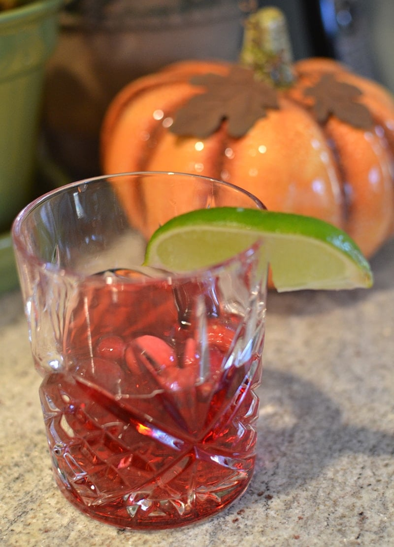 Thanksgiving Cranberry Vodka