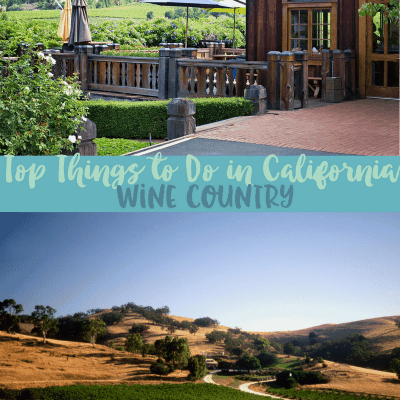 Top Things to Do in California Wine Country