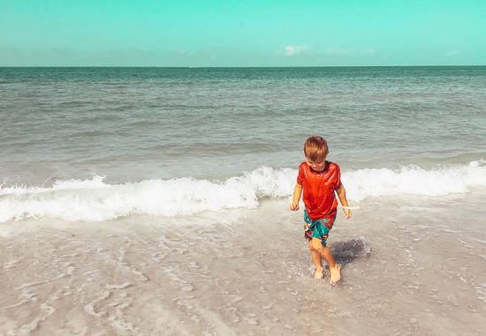 Palm Tree Paradise: Tradewinds | St. Pete Beach Hotels