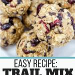 Trail Mix Energy Balls Recipe