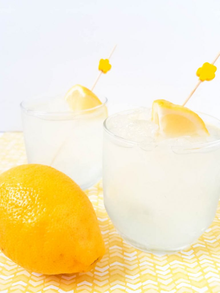 Vodka Lemonade Cocktail