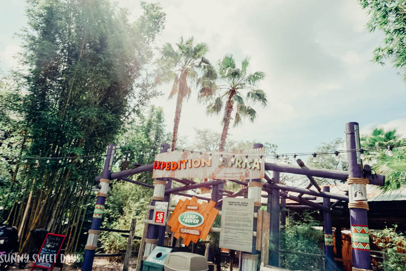 ZooTampa Lowry Park Zoo Review
