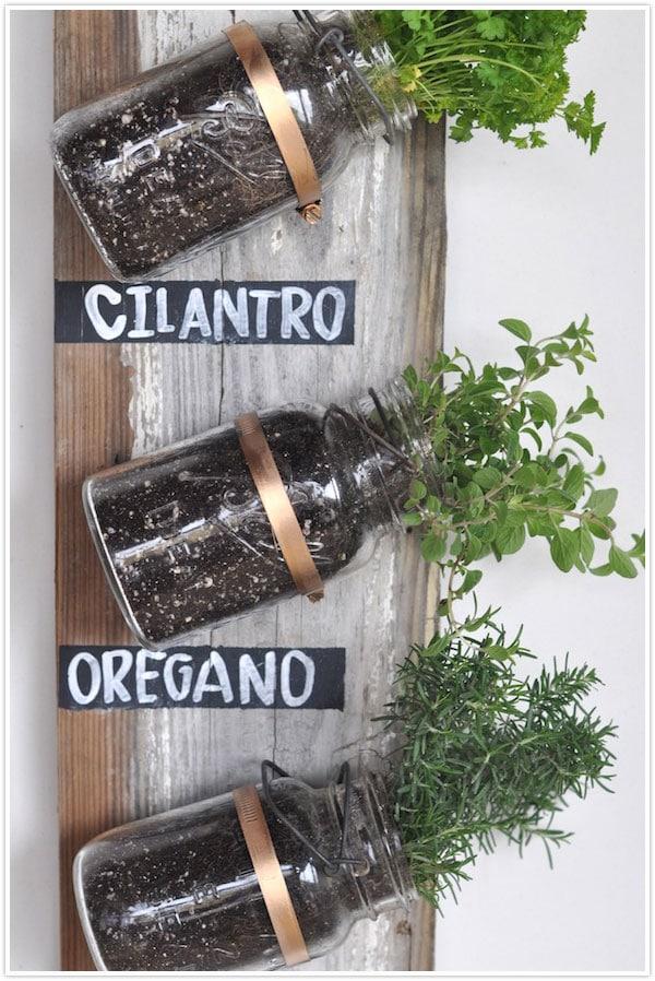 Transformed :: Mason Jar Herb Garden
