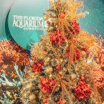 Florida Aquarium Events: Saturdays with Santa