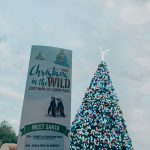 Christmas in the Wild at ZooTampa