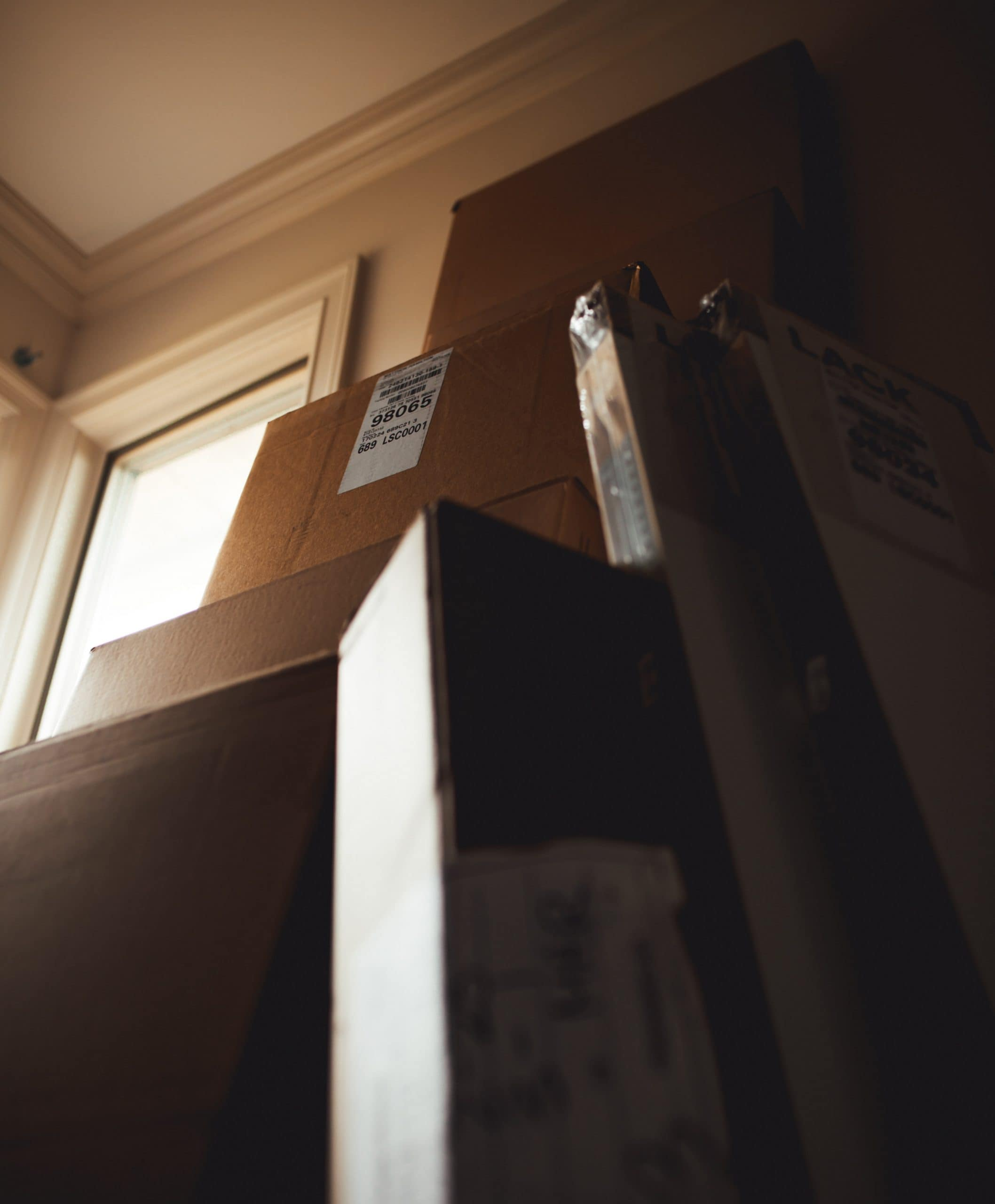 Professional Movers — Things To Know