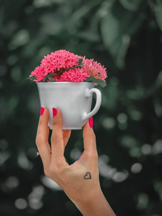 unrecognizable woman presenting cup with fresh flowers
