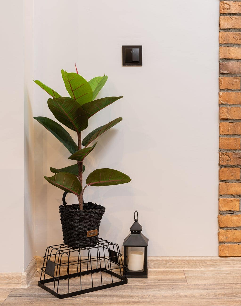 potted plant on basket near lantern with candle in room